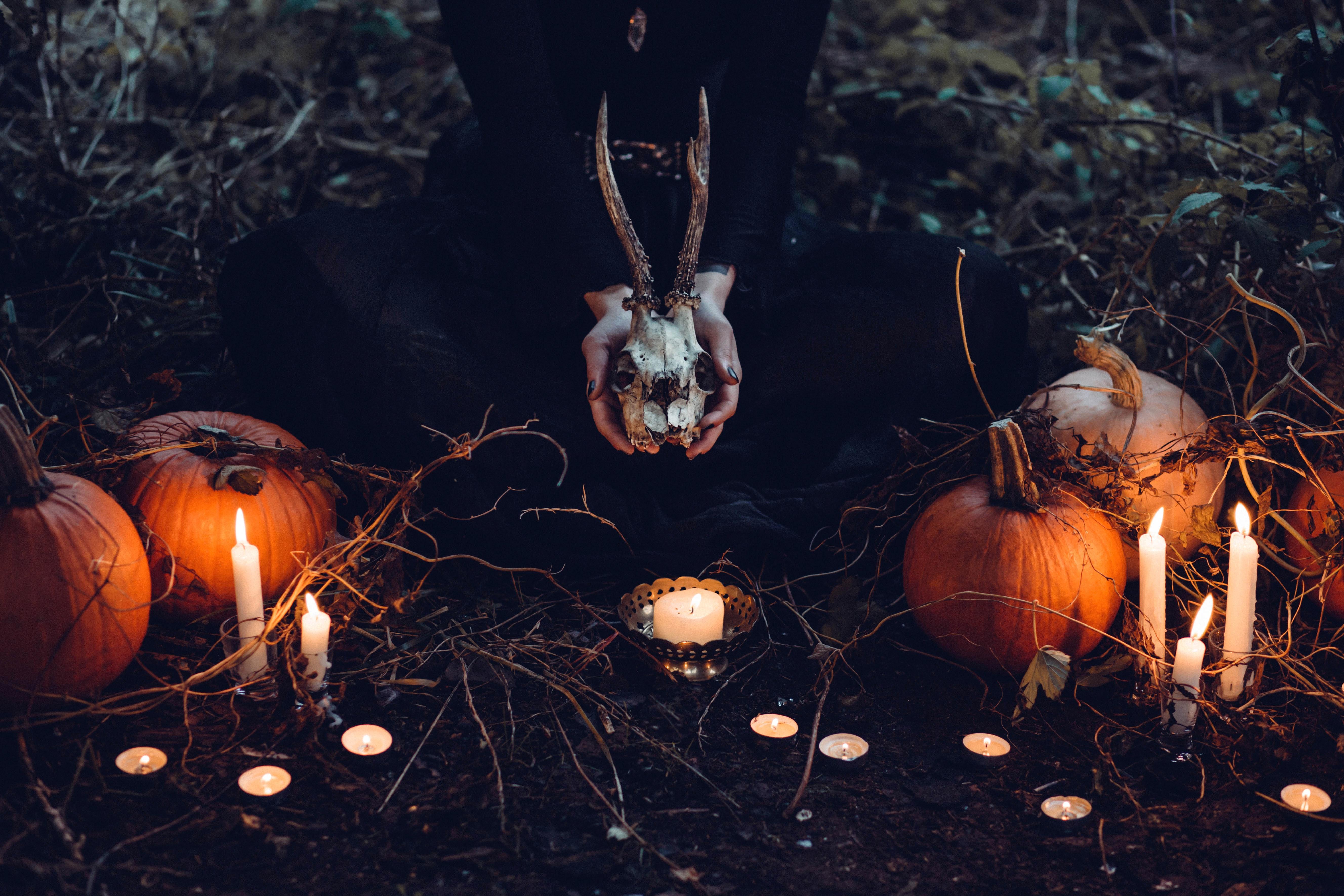 brown-pumpkin halloween decor and gray skull at grass field