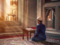 Muslim Culture of India